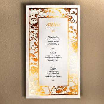 f-03 menu 1